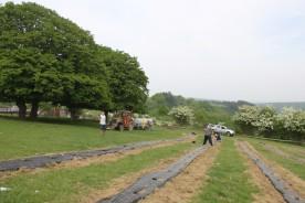 2020-05-08 - Plantation vigne Baudrifosse (13)
