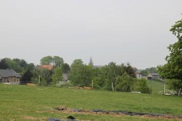 2020-05-08 - Plantation vigne Baudrifosse (15)