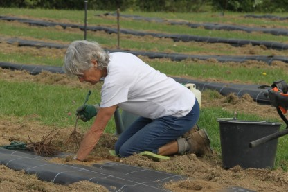 2020-05-08 - Plantation vigne Baudrifosse (18)