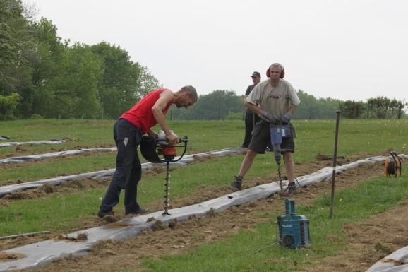 2020-05-08 - Plantation vigne Baudrifosse (32)
