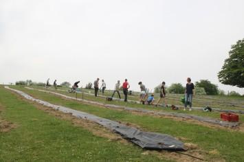 2020-05-08 - Plantation vigne Baudrifosse (46)