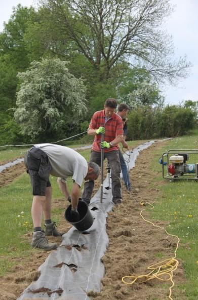 2020-05-09 - Plantation vigne Baudrifosse (18)