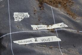 2020-05-09 - Plantation vigne Baudrifosse (36)