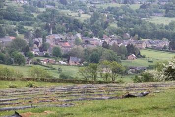2020-05-09 - Plantation vigne Baudrifosse (49)
