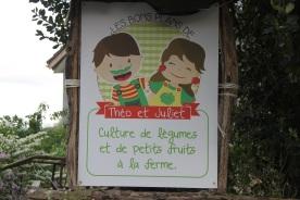 2020-05-09 - Plantation vigne Baudrifosse (50)