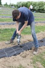 2020-05-09 - Plantation vigne Baudrifosse (6)
