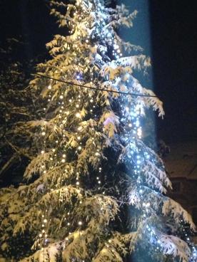 Becco sous la neige - ES 2
