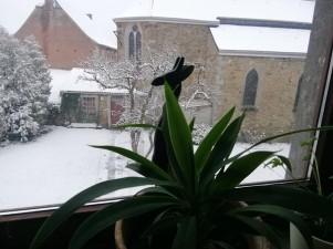 Becco sous la neige - LV